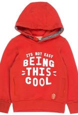 Sturdy Hoody Its Not Easy