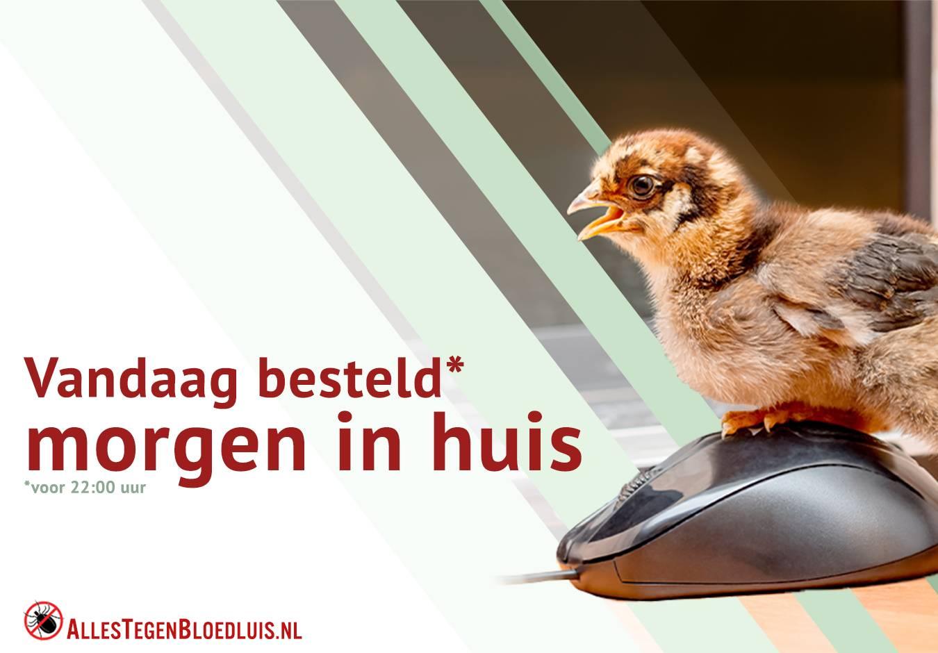 AllesTegenBloedluis.nl
