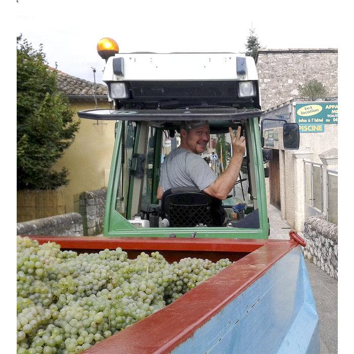 - Vieilles Vignes 2017