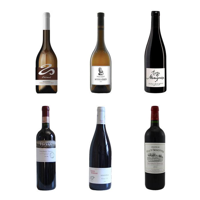 Pakket met 6 lekkere terroir wijnen
