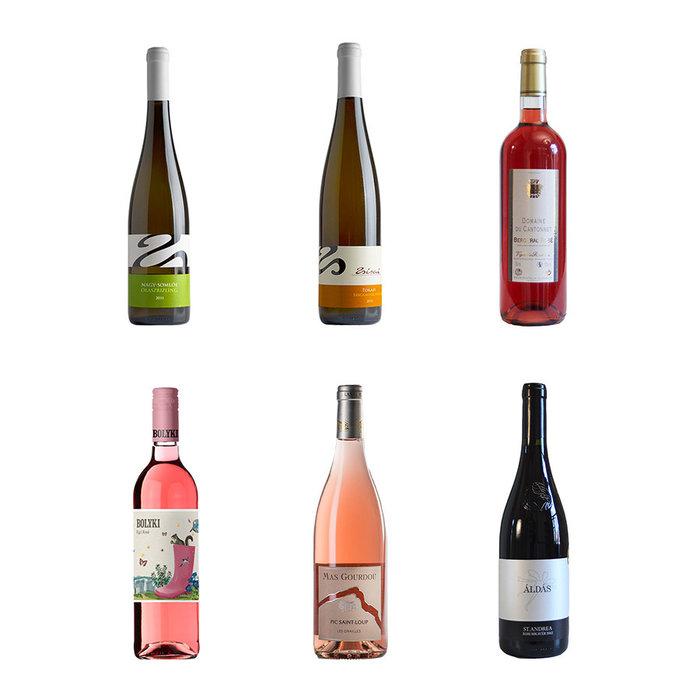 Pakket met 6 mooi weer wijnen