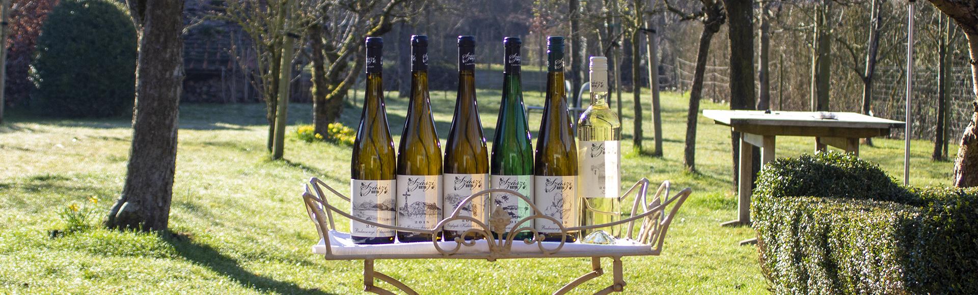 6 bio wijnen uit Badacsony