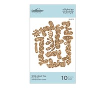 Spellbinders Die D-Lites Wild About You Etched Dies (S3-373)