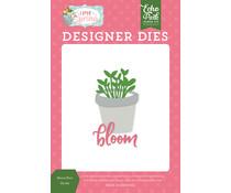 Echo Park Bloom Plant Dies (LSP204041)