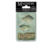Stamperia Fish 8x5.5cm Magnet (EMAG019)