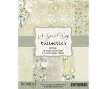Reprint A Special Day 6x6 Inch Paper Pack (RPP036)