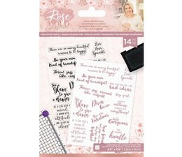 Crafter's Companion Rose Gold Sassy Sentiments Clear Stamps (S-RG-ST-SASS)