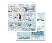 Stamperia Arctic Antarctic Cards 12x12 Inch Paper Sheets (10pcs) (SBB732)
