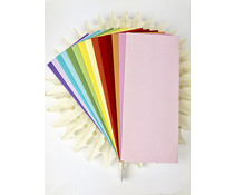 Picket Fence Studios Slim Line Envelopes 4.125 x 9.5 Inch Rainbow (EN-100)
