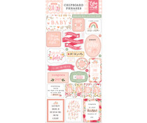 Echo Park Welcome Baby Girl 6x13 Inch Chipboard Phrases (WBG233022)