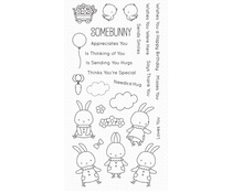 My Favorite Things Somebunny Clear Stamps (BB-118)