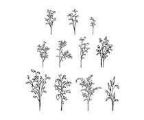 Spellbinders Greenery and Blooms Clear Stamps (STP-031)