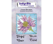 IndigoBlu Colour Me Aster A6 Rubber Stamp (IND0746)