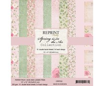 Reprint Spring is in the Air Collection 12x12 Inch Paper Pack (CRP032)