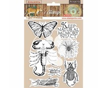 Stamperia Natural Rubber Stamp Amazonia Butterfly (WTKCC193)