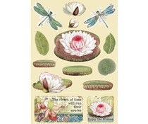 Stamperia Wooden Shapes A5 Amazonia Water Lily (KLSP094)
