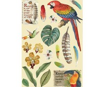 Stamperia Wooden Shapes A5 Amazonia Parrot (KLSP095)