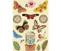Stamperia Wooden Shapes A5 Amazonia Butterfly (KLSP093)