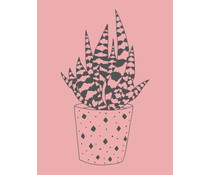 Colop Aloe Vera Rose M&B Rubber Stamps (MB0021)