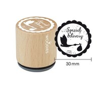 Woodies Special delivery Rubber Stamp (WE6003)