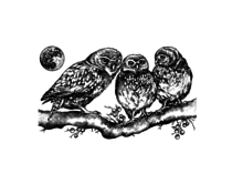 Crafty Individuals Owl Family Unmounted Rubber Stamps (CI-513)