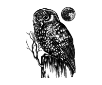 Crafty Individuals Owl and Moon Unmounted Rubber Stamps (CI-512)