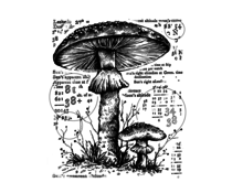 Crafty Individuals Counting Toadstools Unmounted Rubber Stamps (CI-574)