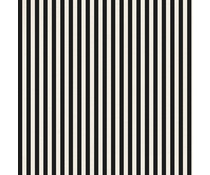 Finnabair Stripes 12x12 Inch Resist Canvas (960636)