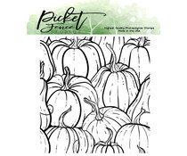 Picket Fence Studios All the Gourds 4x4 Inch Clear Stamps (F-148)