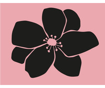 Colop Flower Anemone Rose M&B Rubber Stamps (MB0065)