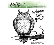 Picket Fence Studios Whooo are You? 4x4 Inch Clear Stamps (H-112)