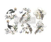 Re-Design with Prima Decor Transfers 6x12 inch Rare Birds (3 Sheets) (656027)