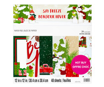 Craft Smith Say Freeze 12x12 Inch Paper Pad (MSE7483)