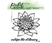 Picket Fence Studios Torch Ginger Tropical Flower 4x4 Inch Clear Stamps (F-152)