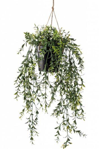 Kunst hangplant Buxus 50 cm
