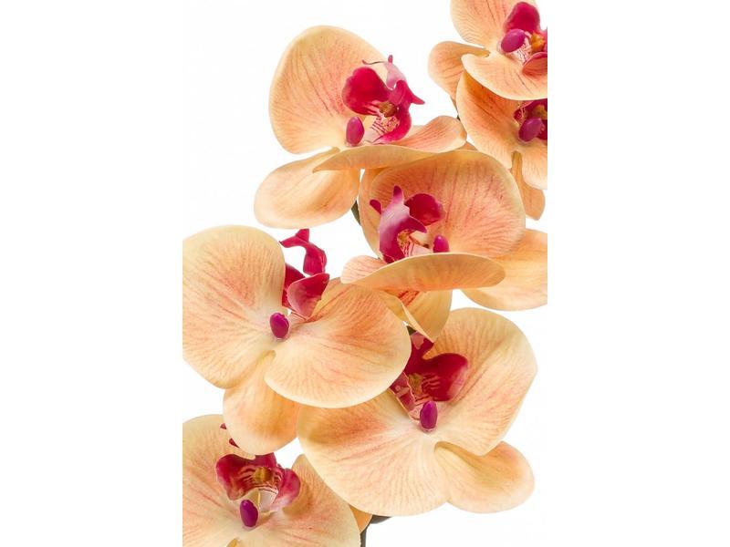 Phalaenopsis orchidee kunstbloem perzik 83 cm