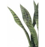 Kunstplant Sansevieria 50 cm in pot