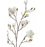 Kunst Magnolia tak crème 105 cm