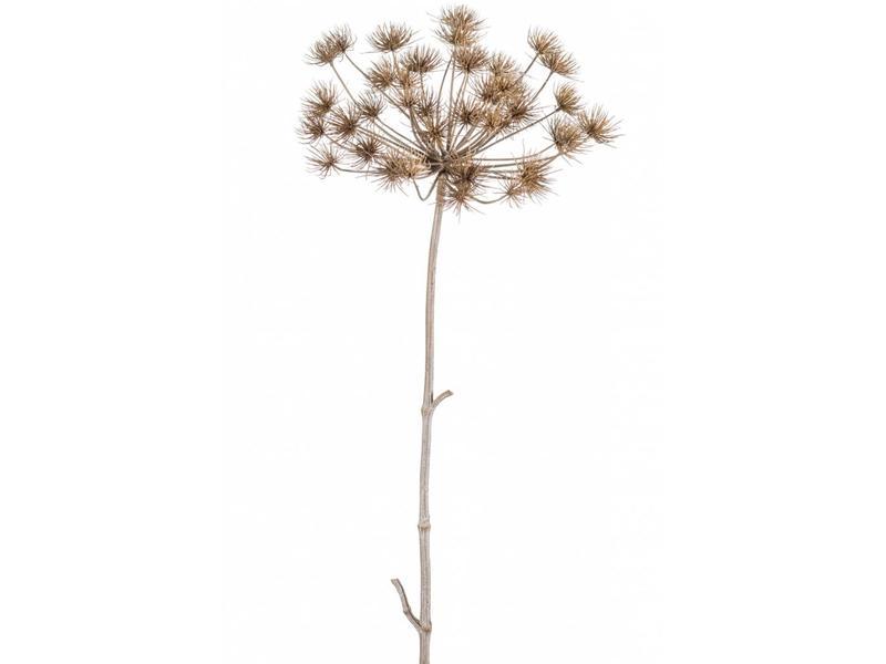 Kunst gedroogde berenklauw 125 cm