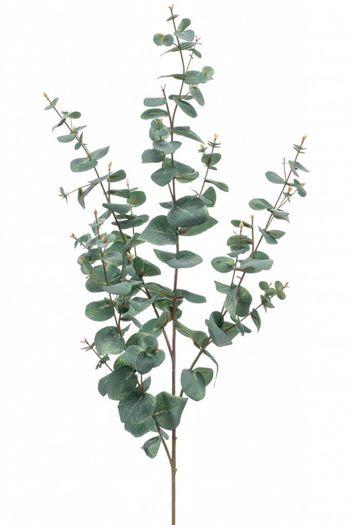 Kunst Eucalyptus tak 115 cm