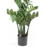 Kunstplant Zamioculcas 70 cm in pot