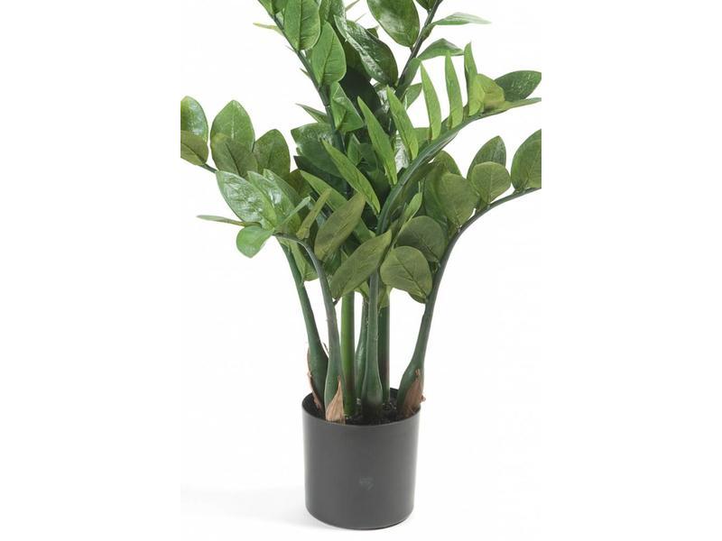 Kunstplant Zamioculcas 70cm in pot