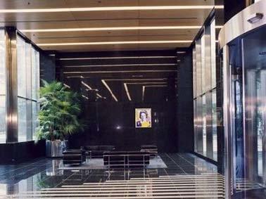 Grote kunstplanten in het interieur