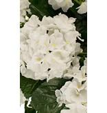 Witte kunst hortensia 40 cm in pot
