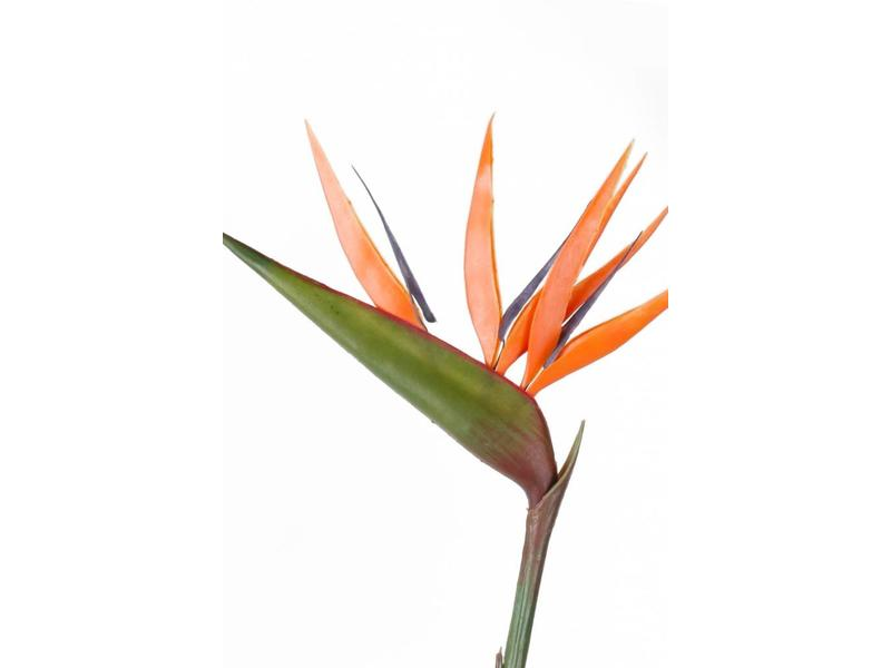 Kunstbloem Strelitzia 90cm oranje