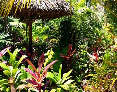 Geef uw tuin kleur met kunstplanten voor buiten