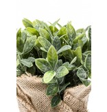 Kunst kruidenplant munt 19cm