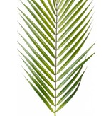 Kunst palmblad Chamaedorea 75cm
