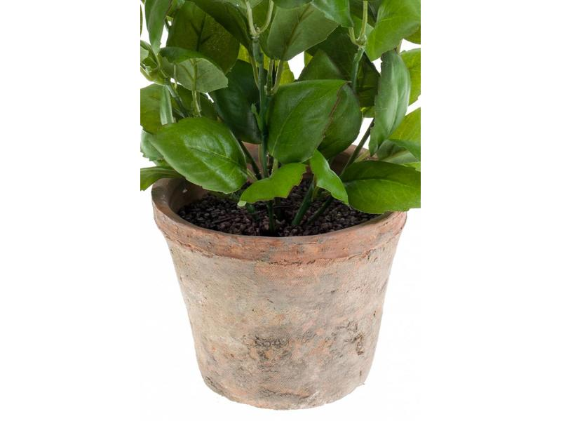 Kunstplant basilicum 32 cm
