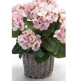 Kunstplant hortensia roze 45cm